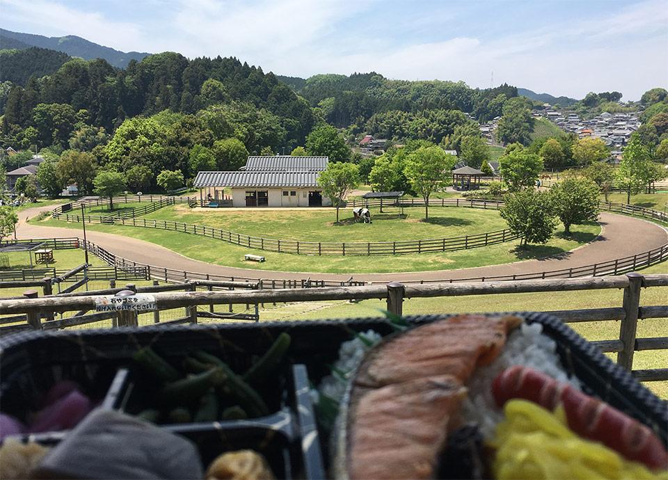 奈良県宇陀市 アニマルパーク